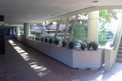 Sedgefield Interior Landscapes_Artificial-48