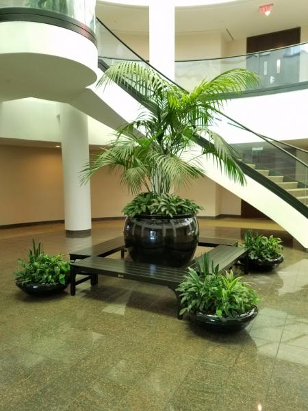 Sedgefield-Interior-Landscapes_Planters-13