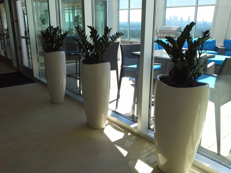 Sedgefield-Interior-Landscapes_Planters-16