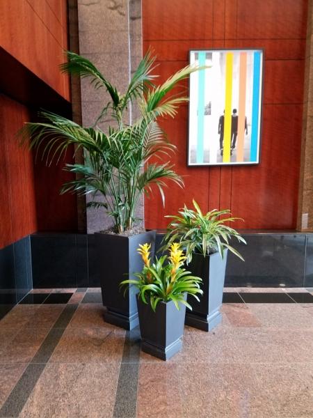 Sedgefield-Interior-Landscapes_Planters-39