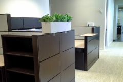Sedgefield-Interior-Landscapes_Containers-61