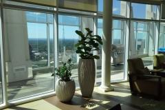 Sedgefield-Interior-Landscapes_Planters-19