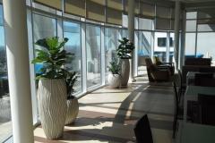 Sedgefield-Interior-Landscapes_Planters-20