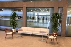 Sedgefield-Interior-Landscapes_Planters-55