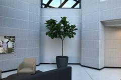 Sedgefield-Interior-Landscapes_Planters-73