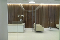 Update_Sedgefield-Interior-Landscapes_Artificial-43