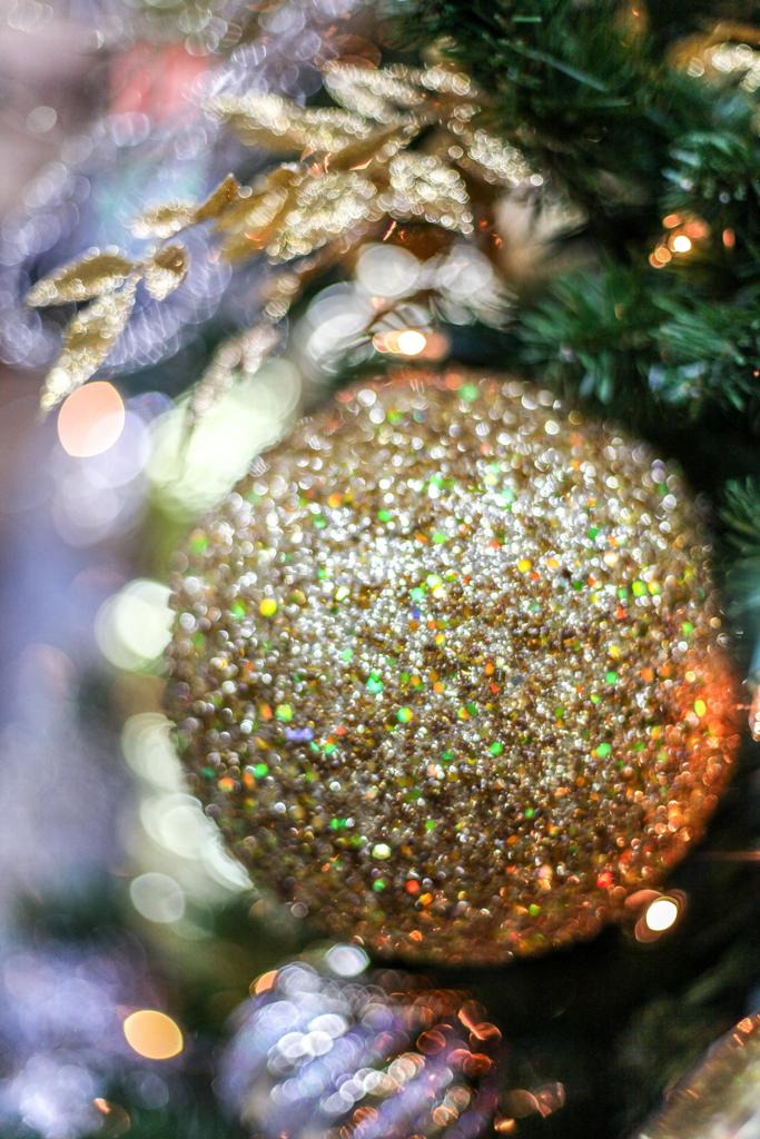 Sedgefield Interior Landscapes_Holiday Decor-14
