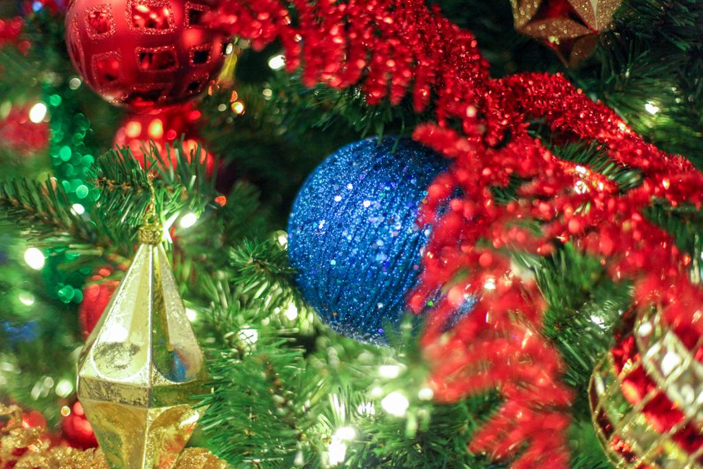 Sedgefield Interior Landscapes_Holiday Decor-24