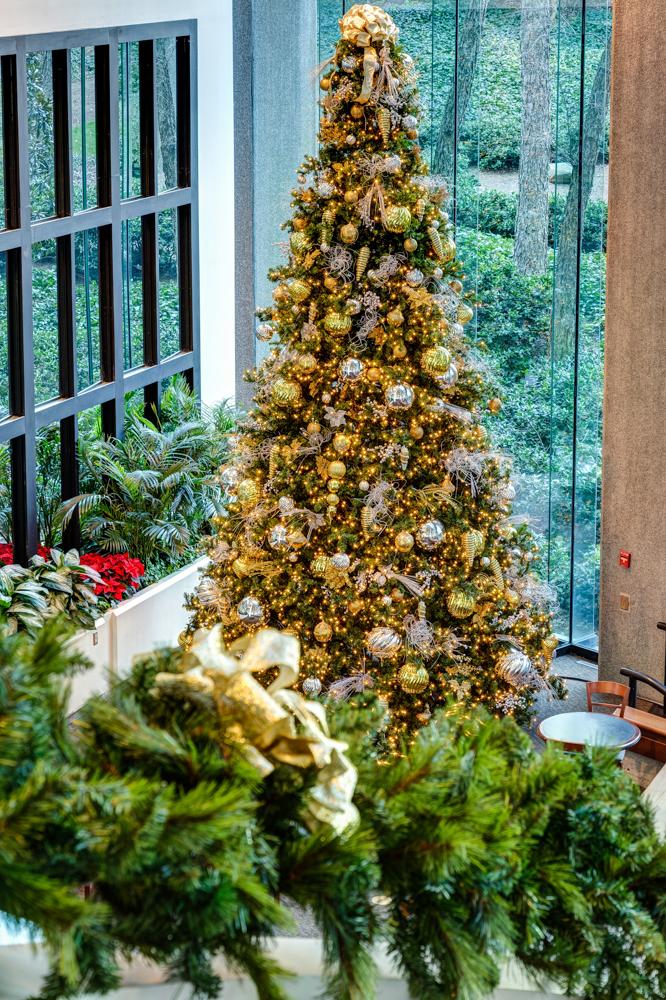 Sedgefield Interior Landscapes_Seasonal Color-42