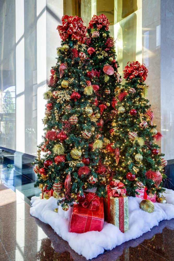 Sedgefield Interior Landscapes_Seasonal Color-50
