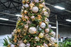Sedgefield Interior Landscapes_Holiday Decor-10