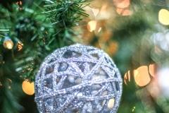Sedgefield Interior Landscapes_Holiday Decor-16
