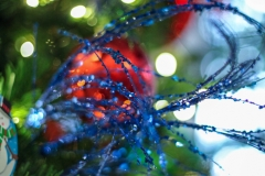 Sedgefield Interior Landscapes_Holiday Decor-25