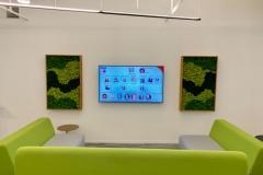 Sedgefield-Interior-Landscapes_Installations-10
