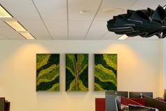 Sedgefield-Interior-Landscapes_Installations-9