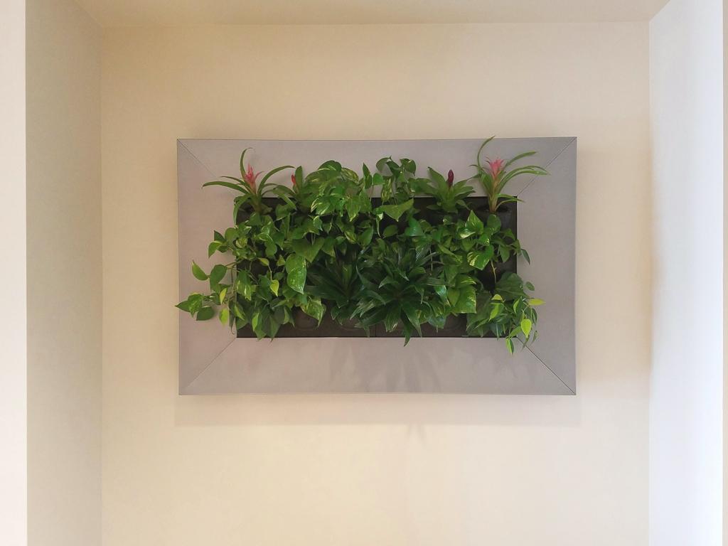 Sedgefield Interior Landscapes_Living Walls-8