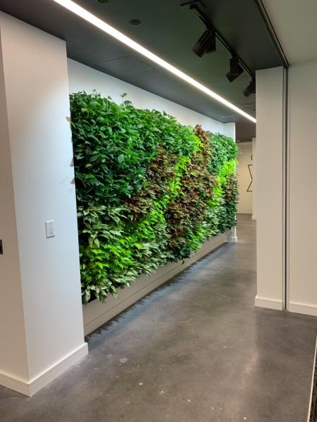 Sedgefield-Interior-Landscapes_Living-and-Moss-Walls-6