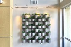 Sedgefield Interior Landscapes_Living Walls-12