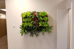 Sedgefield Interior Landscapes_Living Walls-4