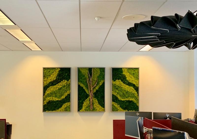 Sedgefield Interior Landscapes_Moss Walls-14
