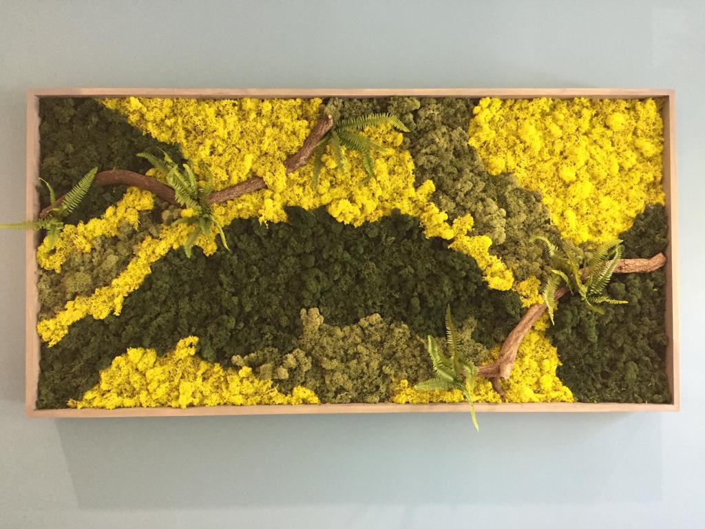 Sedgefield Interior Landscapes_Moss Walls-2