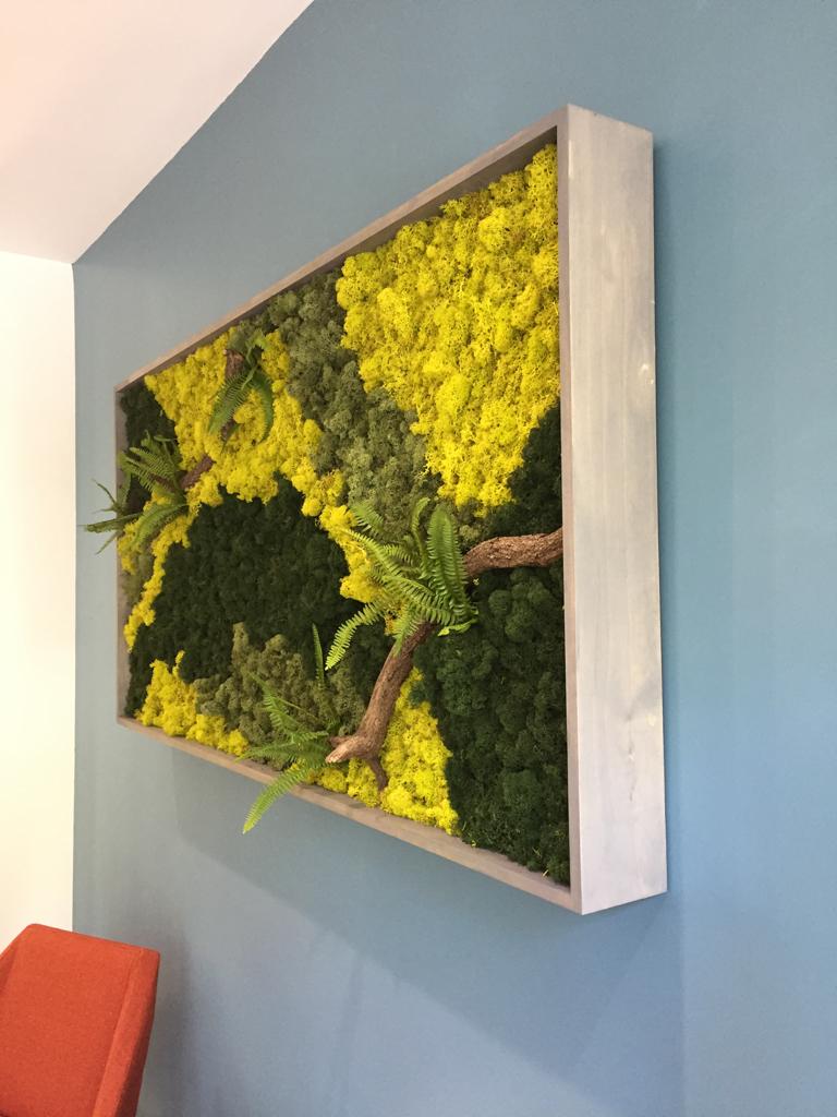 Sedgefield Interior Landscapes_Moss Walls-3