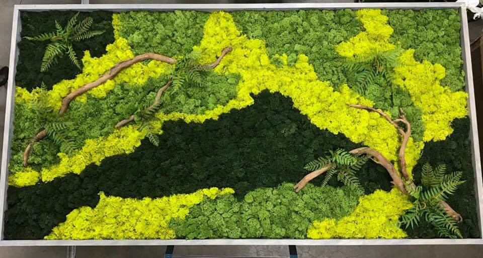 Sedgefield Interior Landscapes_Moss Walls-5