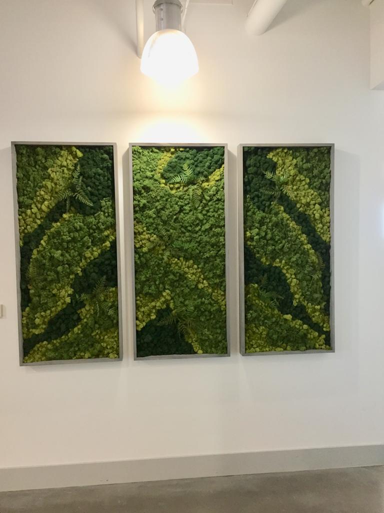 Sedgefield Interior Landscapes_Moss Walls-9
