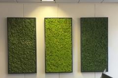 Sedgefield-Interior-Landscapes_Moss-Wall_Installation