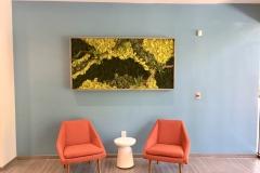Sedgefield Interior Landscapes_Moss Walls-1