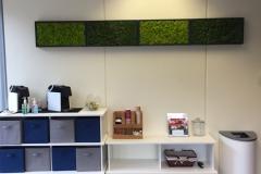Sedgefield Interior Landscapes_Moss Walls-10