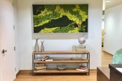 Sedgefield Interior Landscapes_Moss Walls-4