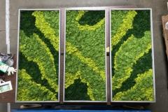 Sedgefield Interior Landscapes_Moss Walls-6