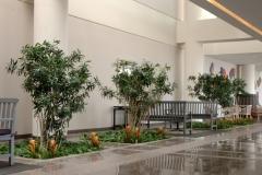 Sedgefield-Interior-Landscapes_Tenant-Spaces-23