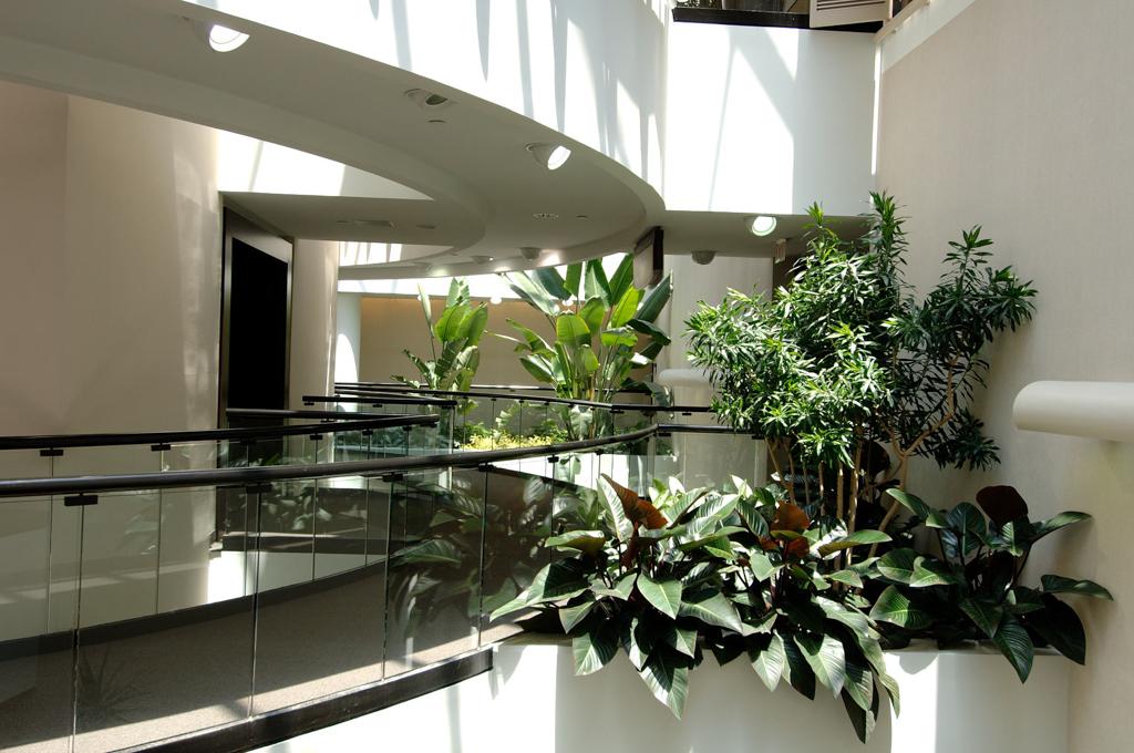 Sedgefield Interior Landscapes_Tenant Spaces-17