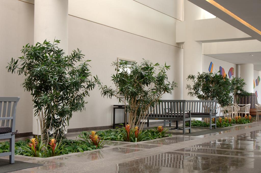 Sedgefield Interior Landscapes_Tenant Spaces-23